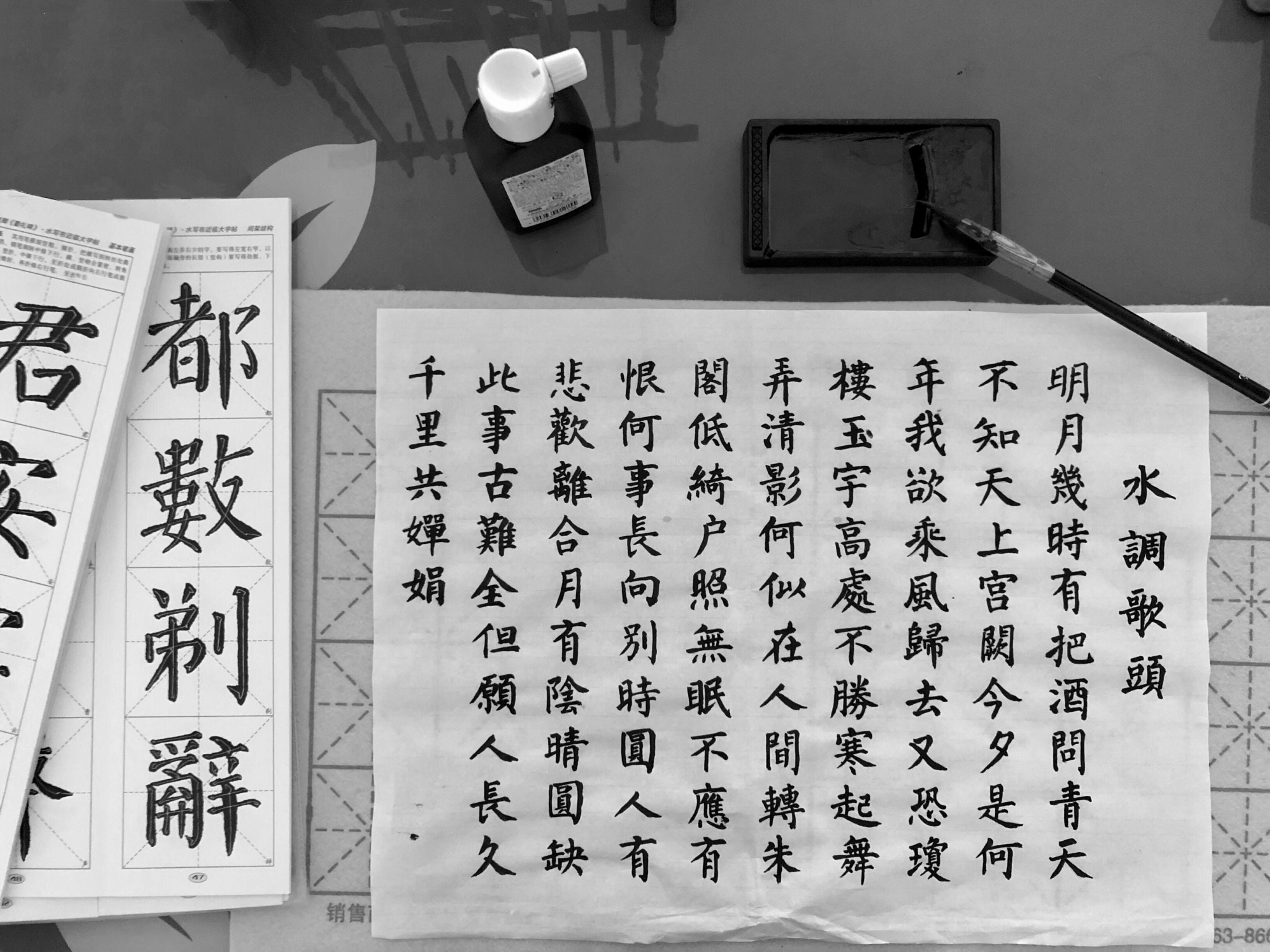 Çin Dili Edebiyatı, Sinoloji, Çince Mütercim Tercümanlık